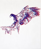 http://jonasbouleau.com/files/gimgs/th-49_49_eagle-vs-drone.jpg